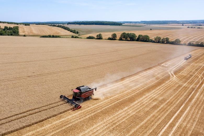 Les surfaces agricoles recouvrent 38 % du territoire européen