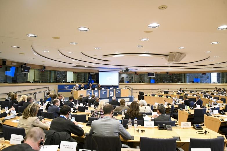 Réunion de la Commission des Affaires constitutionnelles (AFCO) du Parlement européen - Crédits : Parlement européen
