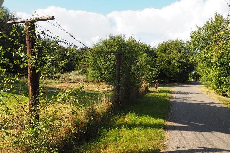 Sur les restes du rideau de fer, la nature a repris ses droits, comme ici à la frontière austro-slovaque - Crédits : Flickr cathy.klima / CC BY-NC 2.0