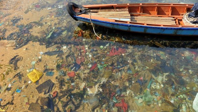 Pollution sacs plastiques
