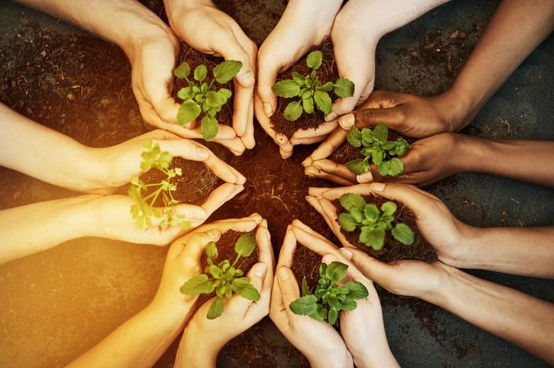 Environnement et climat