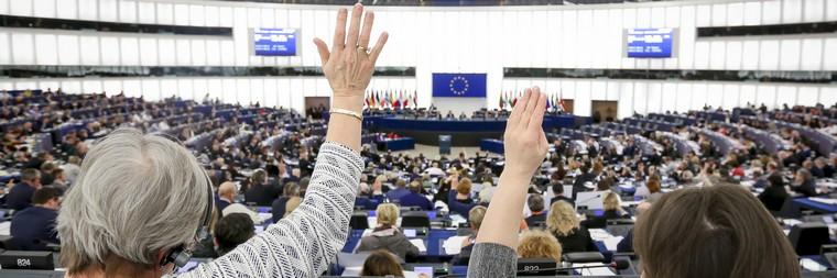 Vote lors de la session plénière, mercredi 12 décembre 2018