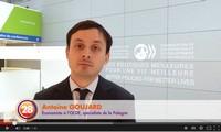 La Pologne, futur poumon économique de l'Europe ?