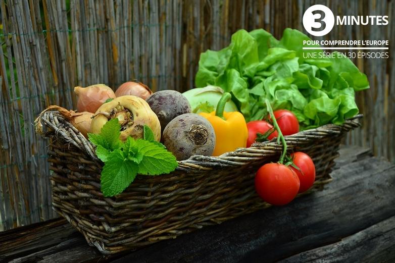 Santé et alimentation dans l'UE - Crédits : Congerdesign / Pixabay