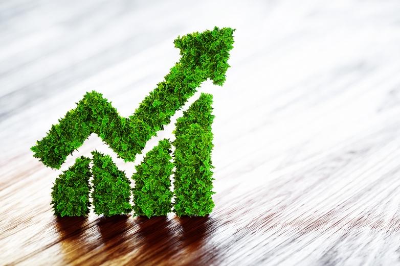 Faut-il croire à la croissance verte ?