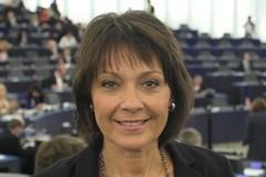 Sylvie Guillaume - Crédits : compte facebook