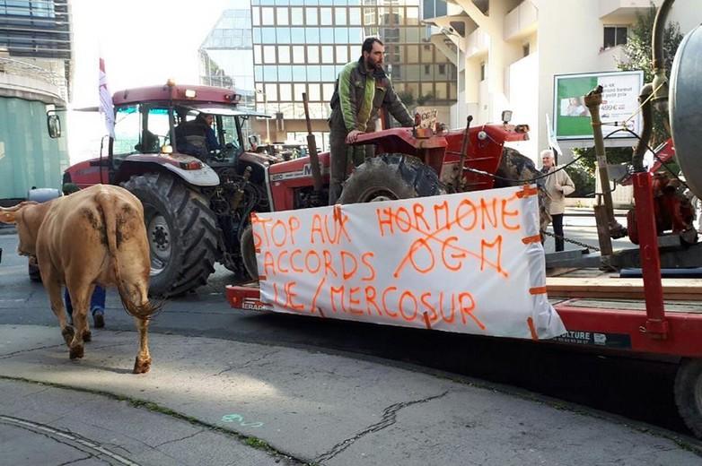 Manifestation d'agriculteurs contre l'accord UE-Mercosur le 21 février