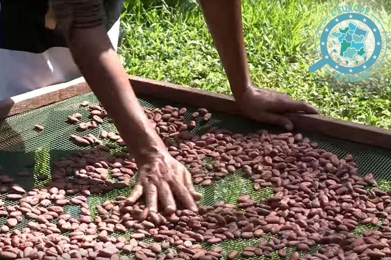 Drupa Angénieux assure elle-même toutes les étapes de la fabrication de son chocolat artisanal - Crédits : La Chronique du Maroni/ Capture d'écran