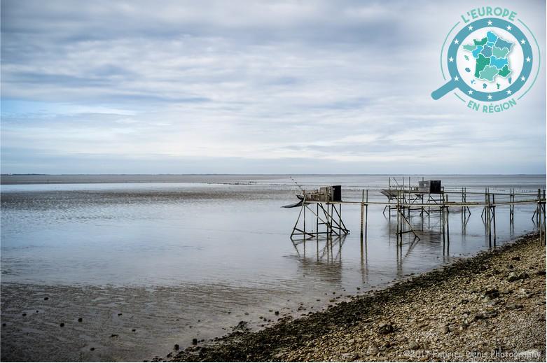 Espace naturel protégé, la baie de l'Aiguillon bénéficie d'un soutien financier de l'Union européenne pour en préserver la biodiversité