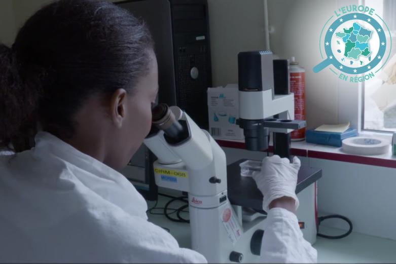 En Guadeloupe, le projet MALIN vise à améliorer le contrôle des maladies infectieuses et regroupe dix institutions de recherche dans le domaine de la santé, dont l'Institut Pasteur