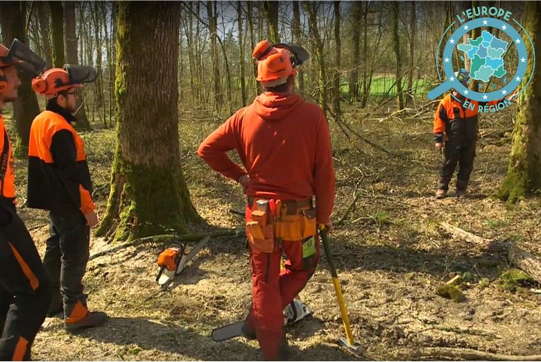 A la Maison Familiale Rurale, des demandeurs d'emploi se forment à l'entretien et l'exploitation des forêts