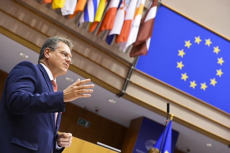 Le vice-président en charge des relations interinstitutionnelles Maroš Šefčovič a présenté au Parlement européen le programme de travail de la Commission européenne pour l'année 2021