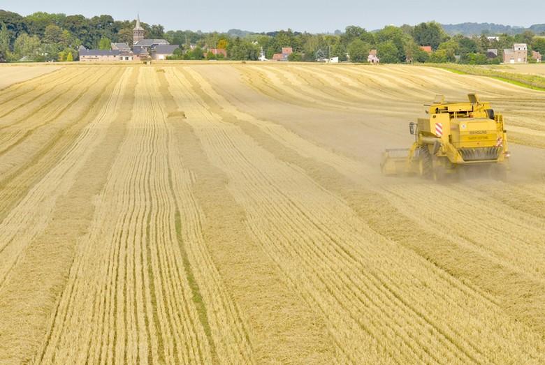 La réforme de la Politique agricole commune vise à la rendre plus verte et moins complexe