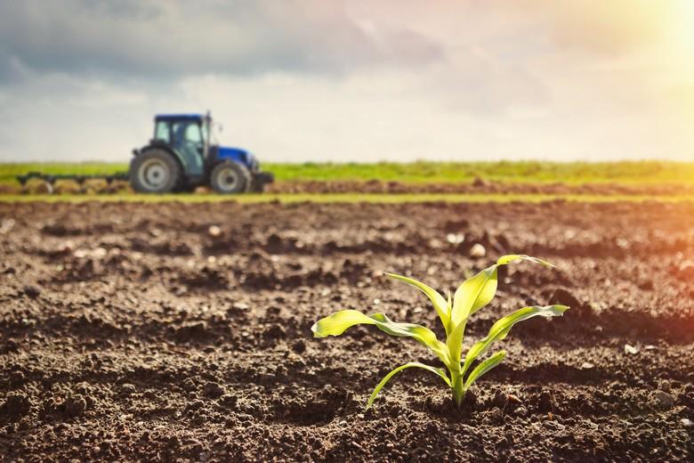La réforme de la PAC vise à encourager des pratiques agricoles plus respectueuses de l'environnement tout en protégeant les revenus des agriculteurs