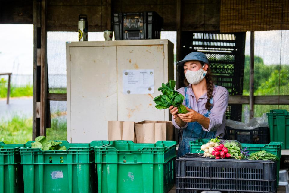 Face au coronavirus, les producteurs ont du s'adapter pour maintenir l'approvisionnement des denrées alimentaires