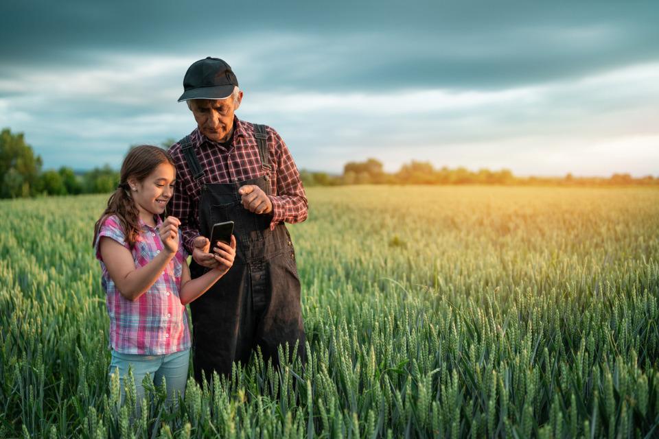 Selon l'Insee, plus d'un agriculteur français sur deux est âgé de 50 ans ou plus