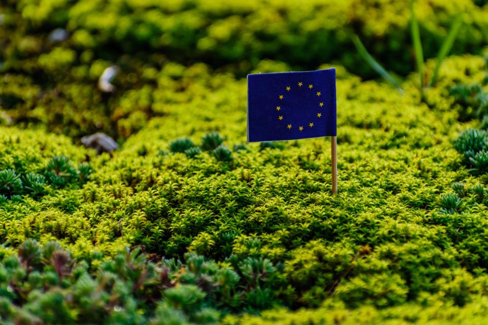 """""""Une Europe plus verte"""" est l'un des objectifs poursuivis par la politique régionale de l'UE"""