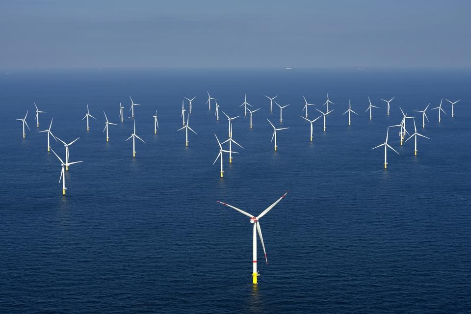 Un parc éolien au large de la Belgique (image d'illustration)